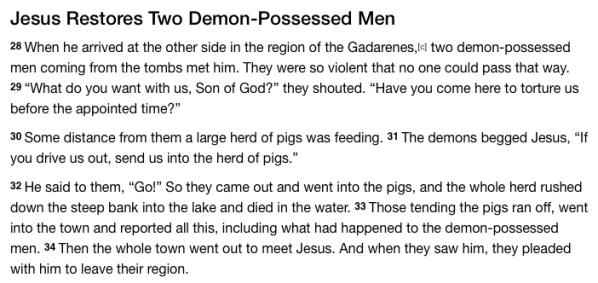 Matthew 8:28-34